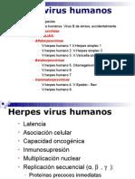 Tema_M20_HERPESVIRUSI