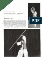 ninpo secrets shoto tanemura pdf 26