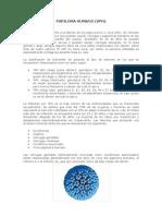 papilom y molu (1)