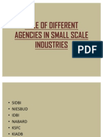 Role of Different Agencies in Small Scale Industries