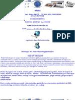 Sitio Web Standard