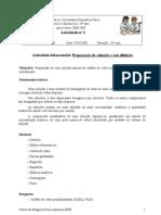 Actividade nº2 Protocolos - 10º Ano