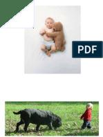 Animalele prietenii copiilor