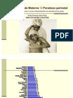 Gênero e saúde materna - evidência científicas e o paradoxo perinatal