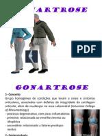GONARTROSE