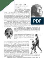 3º PEB - Nuevo Homo