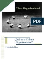 cultura organizacion