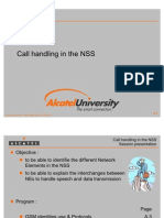 Call Handling in the NSS