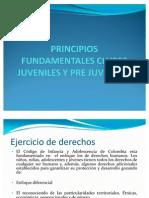 Principios Fund Amen Tales Clubes Juveniles y Pre Juveniles