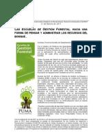 NP Escuelas de Gestión Forestal en Ixiamas