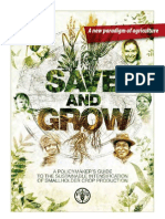 Save and Grow Flyer