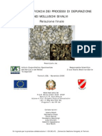 Elaborazione relazione vongola
