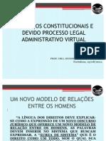 Dra. Denise Lucena - Processo Legal Adm Virtual