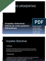 Anomalias Urogenitais 2011 - Final (1)