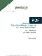 Apuntes para un Diagnóstico Urbano Ambiental en Lomas de Carabayllo