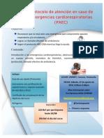 Flyer RCP Basico (1)