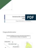 REVISION INTOX ORGANOFOSFORADOS Y CARBAMATOS