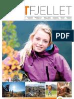 DM Høst 2011 Innovativ Fjellturisme