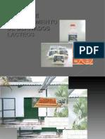 lacteos diapositivas 2003