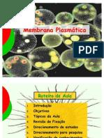 Membrana Plasmática e Organelas citoplasmáticas
