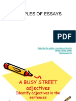 Adjectives ESSAYS Samples