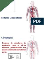 Sistema circulatório - AULA 14