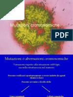 9. Anomalie cromosomiche