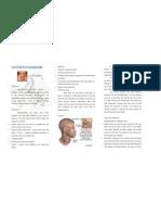 Hyperthyroidism Leaflet