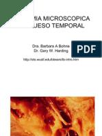 Hueso Temporal Dra. Barbara Bohne