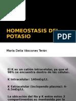 Homeostasis Del Potasioo
