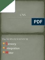 NCM 101 CNS