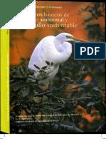 Conceptos Basicos Gestion Sustentabilidad