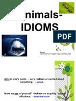 Animals - Idiom