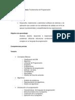 PROGRAMA SINTETICO FUNDAMENTOSPROGRAMACION