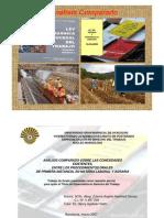Procedimiento Ordinario Agrario y Del Trabajo 2007