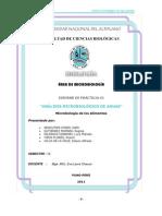 Microbiologia de Agua Potable Puno Peru UNA