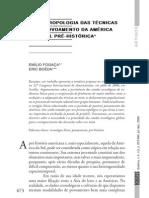 A Antropologia da Técnica e o Povoamento da América do Sul