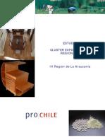 Cluster Araucania Informe