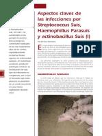 4 Infecciones Por Streptococcus Suis