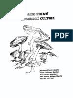 REP 07669E 000 Straw Mushroom