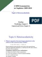 Topic 6 Heteroscedasticity