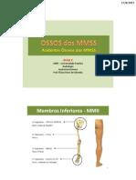 3. Roterio de Aula Prática - OSSOS dos MMII. Flávio Rossi de Almeida - Anatomia Humana