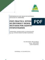 ESTUDIO  DE SÍNTOMAS Y SIGNOS INICITADOS POR AGENTES  FITOPATOGENOS