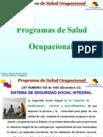 7483894 Programa de Salud Ocupacional Ponzio[1]