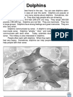 Library Dolphins Exercise