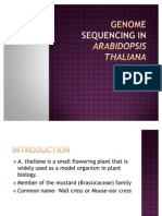 Genome Sequencing in is Thaliana.