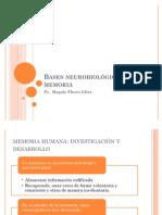 Bases neurobiológicas de la memoria 1