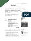 Niveles de organización de la materia - Biología