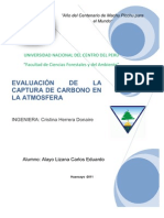 Evaluación de captura de carbono