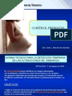 3 c.prenatal